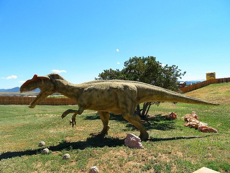 An animatronic T-Rex at Royal Gorge Dinosaur Experience ~ 9 Amazing Adventures in Canon City and Colorado Springs for Families
