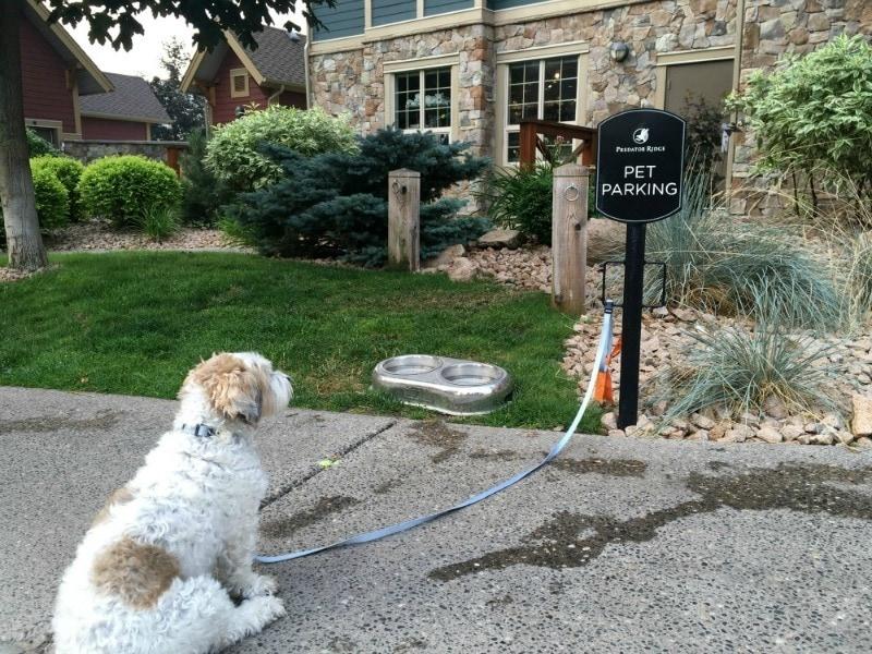Predator Ridge Resort ~ Best Hotels for Pets