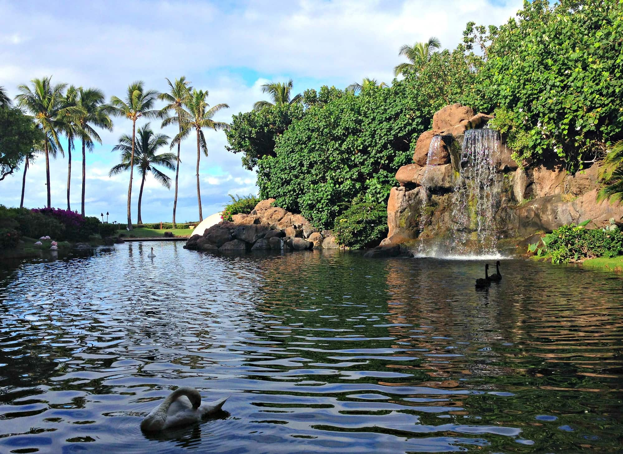 Swan Court at Hyatt Regency Maui with kids