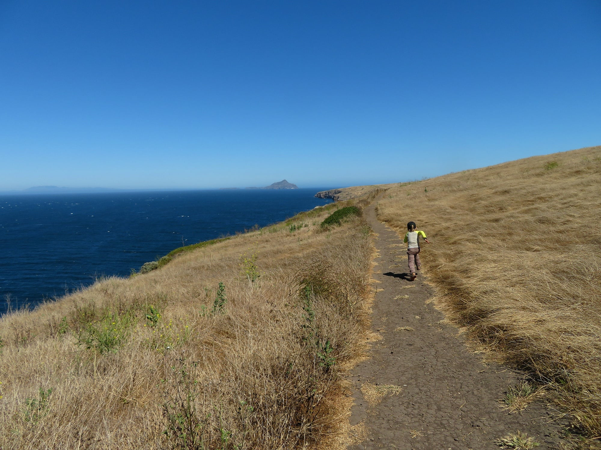 The Channel Islands are an intriguing place to visit with kids in Ventura Country