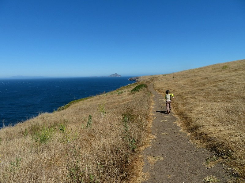 Hiking paths on Santa Cruz Island ~ 7 unique things to do in Ventura County, California with kids