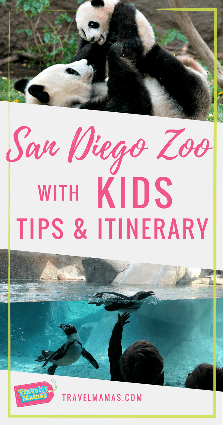 San Diego Zoo with Kids Tips and Itinerary from a San Diego Expert