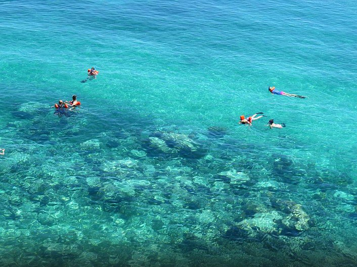 Snorkeling off the shores of Rose Island with Sandy Toes