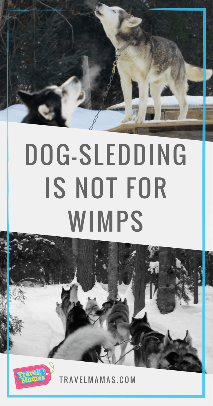 Dog-sledding is not for wimps at Chiens-Traineaux Petite-Nation in Quebec's Outaouais