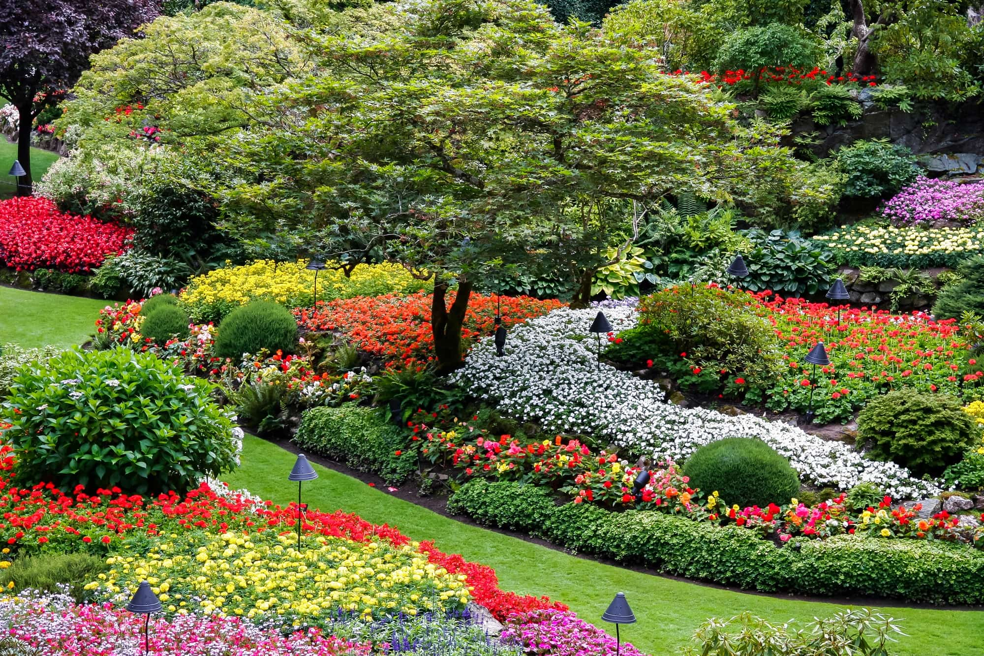 Butchart Gardens on Vancouver Island bursts with flowers in spring ~ 25 Places in Canada Every Family Should Visit