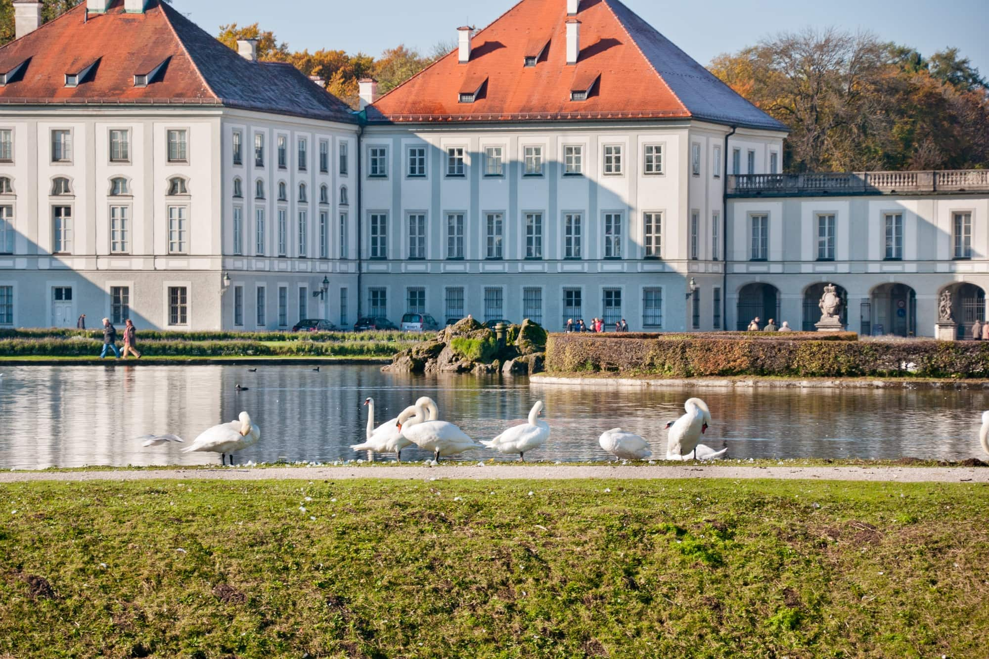Swans at the pond near famous Nymphenburg Palace in Munich with kids