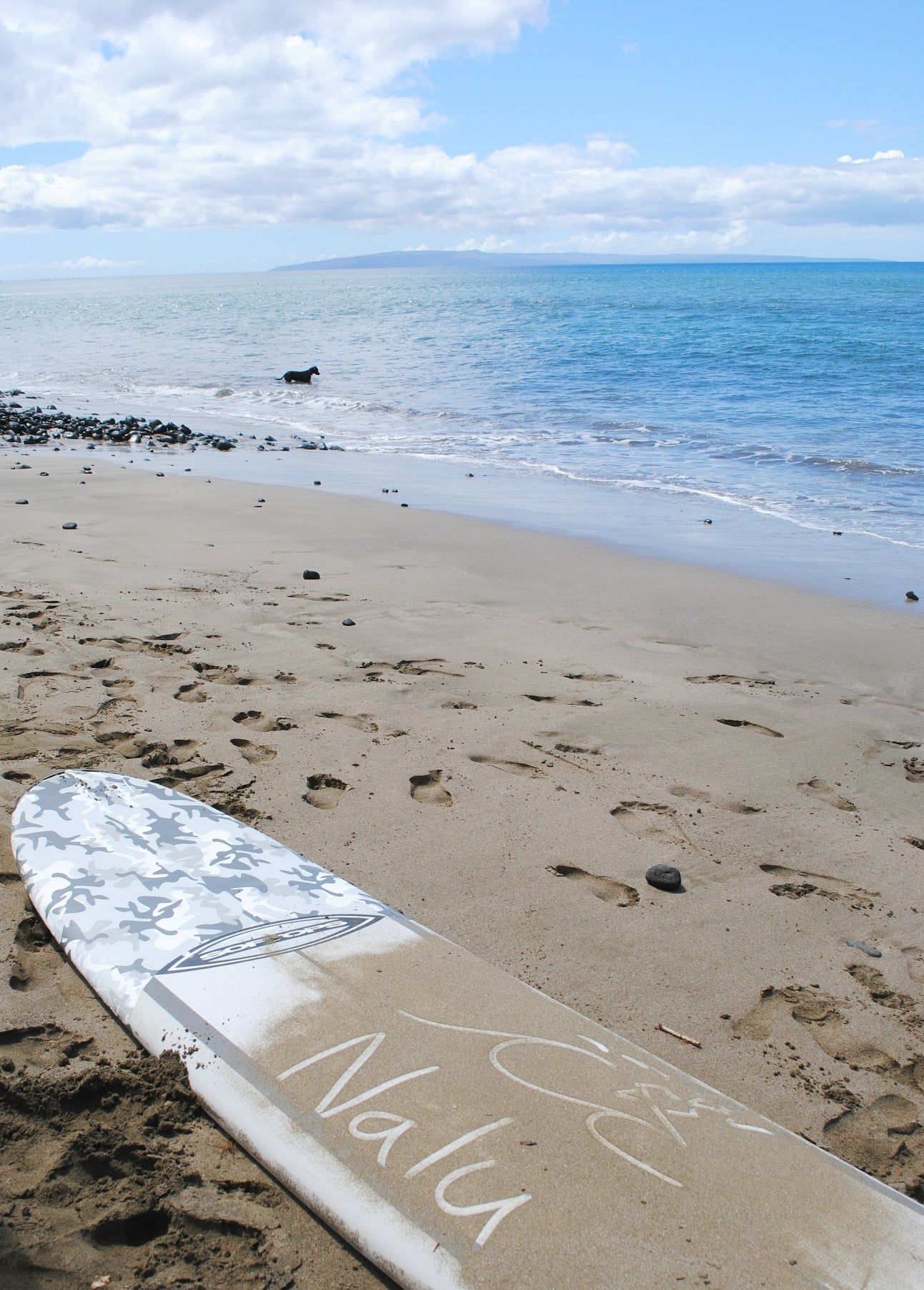 """Nalu"" means wave in Hawaiian ~ Kaanapali with kids"