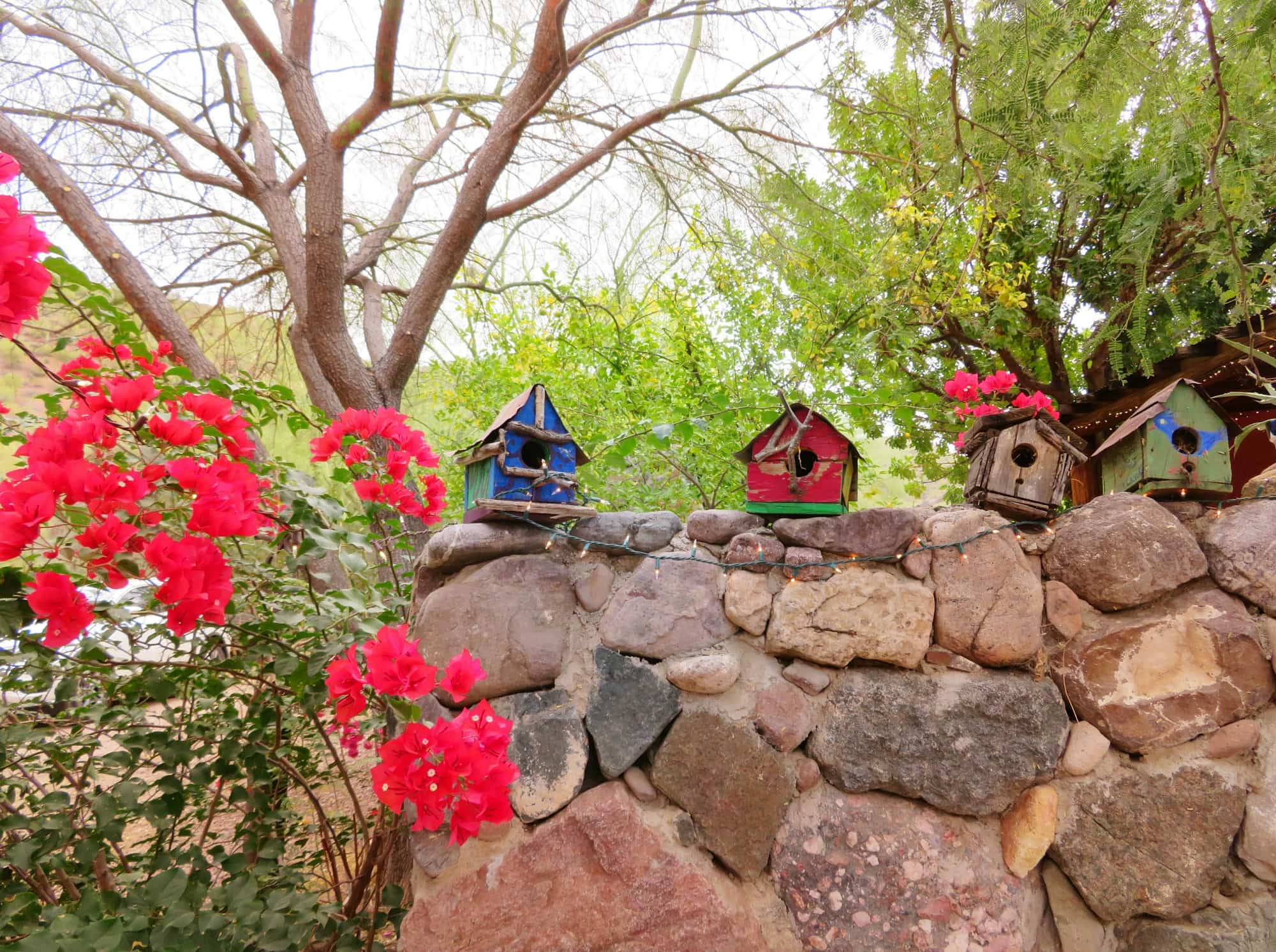 Bird houses at Aravaipa Farms Inn
