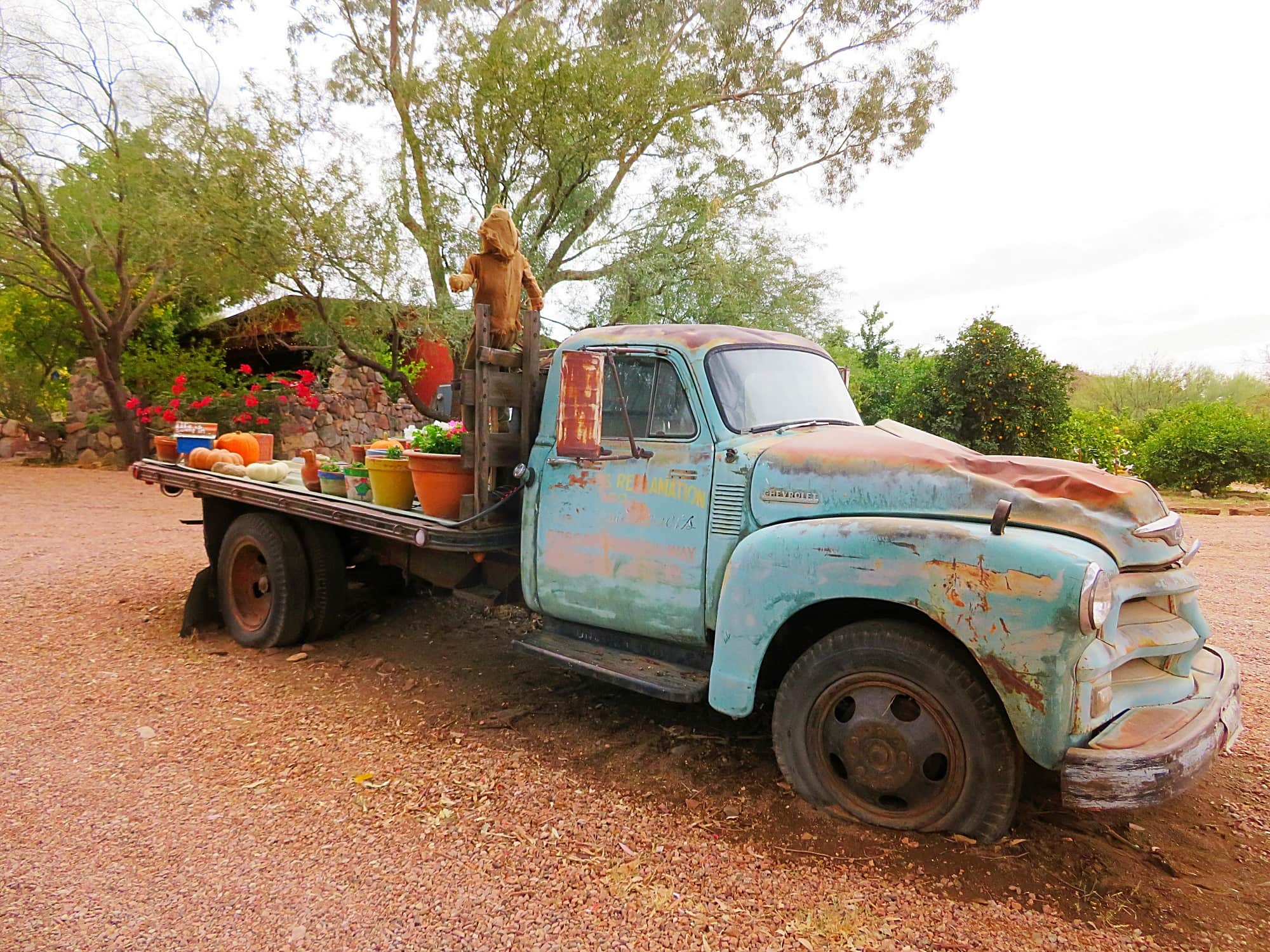 This old pickup has become a work of art at Aravaipa Farms Inn
