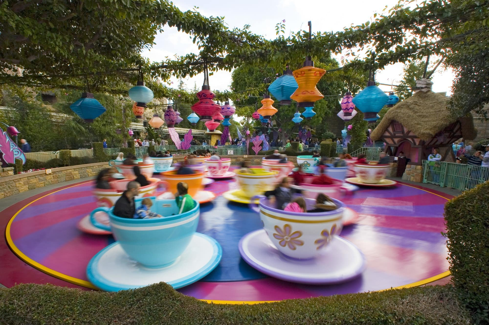Use physics to understand the centrifugal and centripedal forces at work on the Mad Tea Party ride ~ Educational Things to Do at Disneyland with Kids