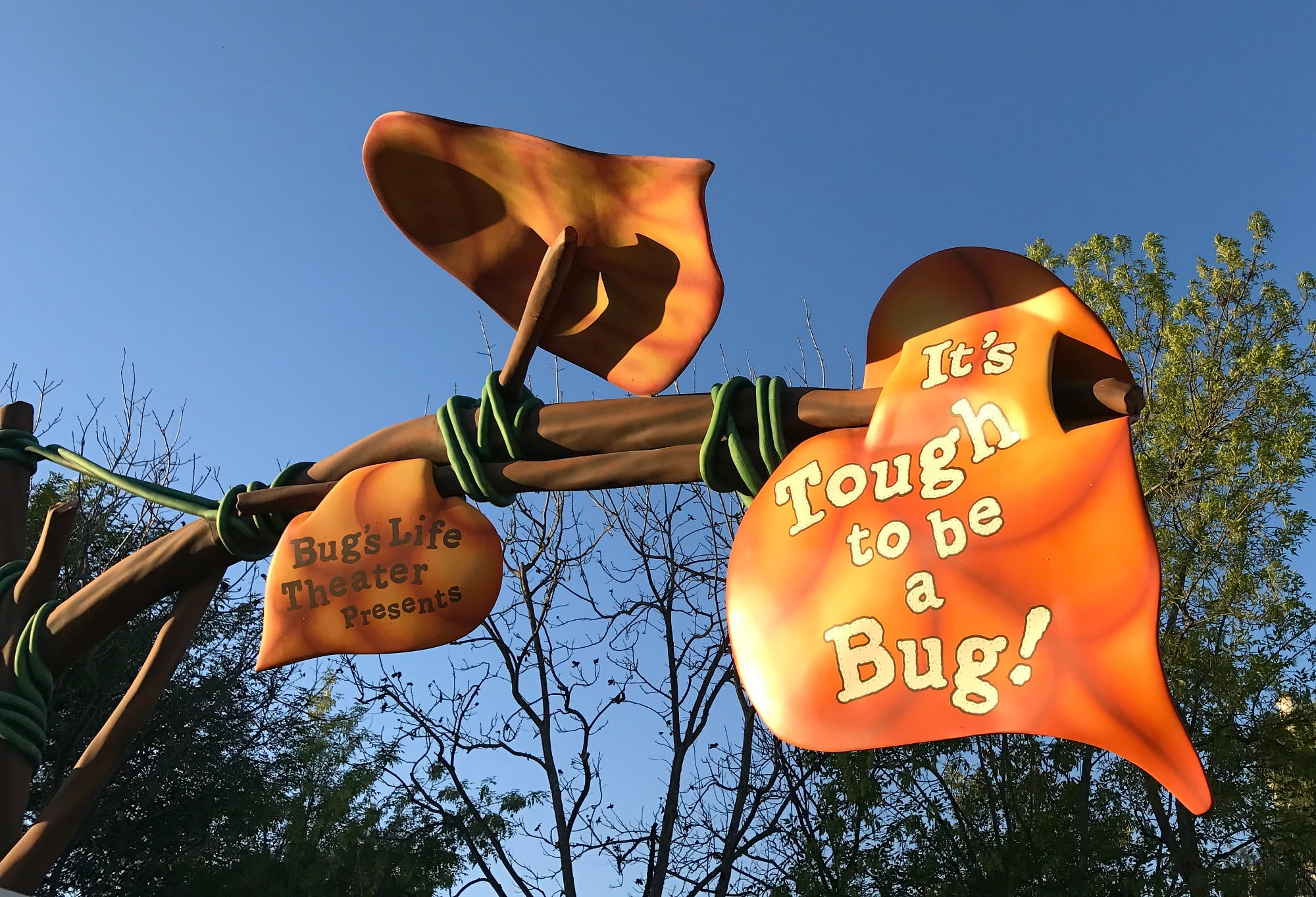Become an honorary bug at It's Tough to be a Bug! ~ Educational Things to Do at Disneyland with Kids