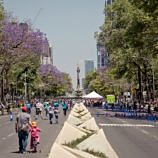 There's so much to explore in Mexico City with kids!