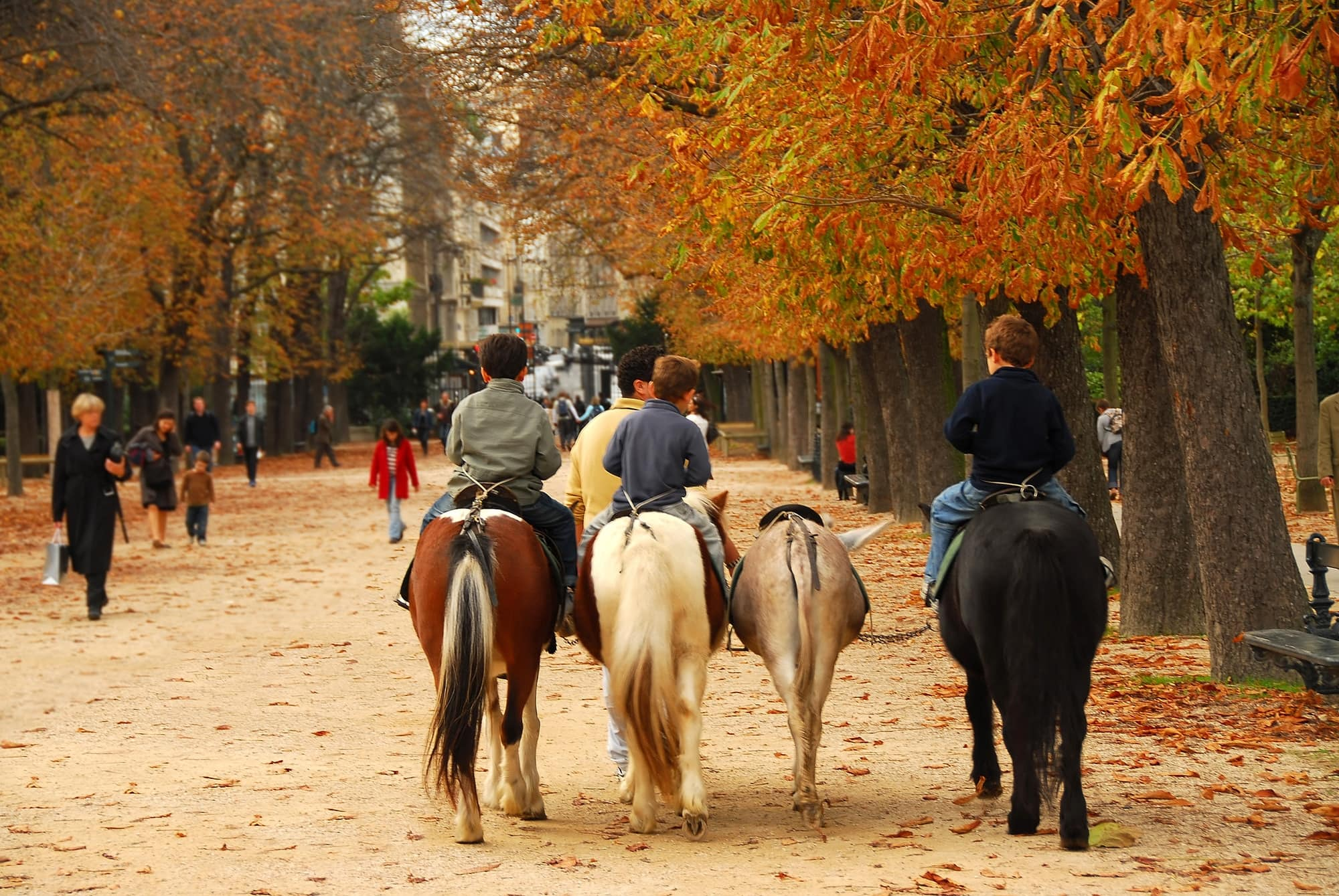 Kids can ride ponies at Jardin du Luxembourg