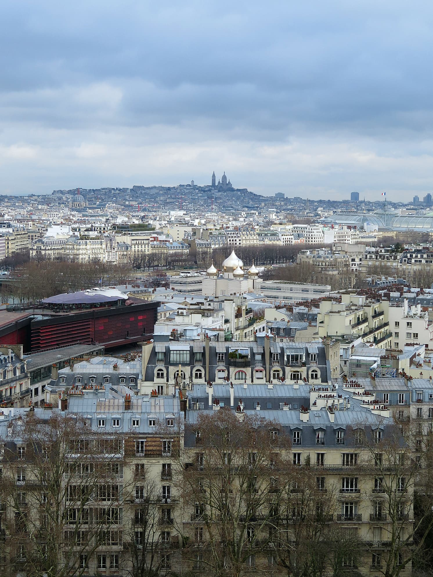 View of Paris, including Montmartre, from the second level of the Eiffel Tower in Paris with kids