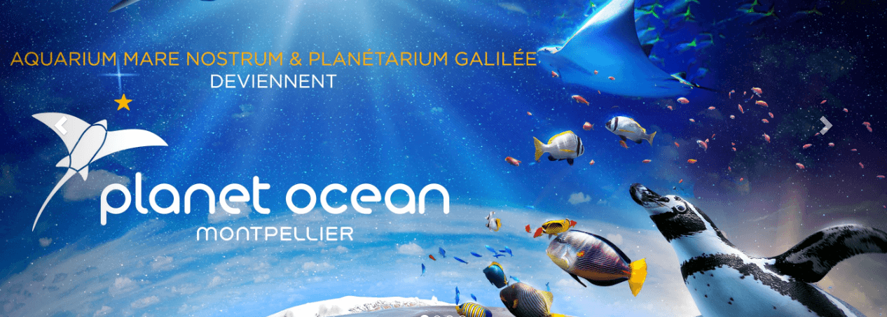 PlanetOcean Montpellier allows families to explore both sky and sea