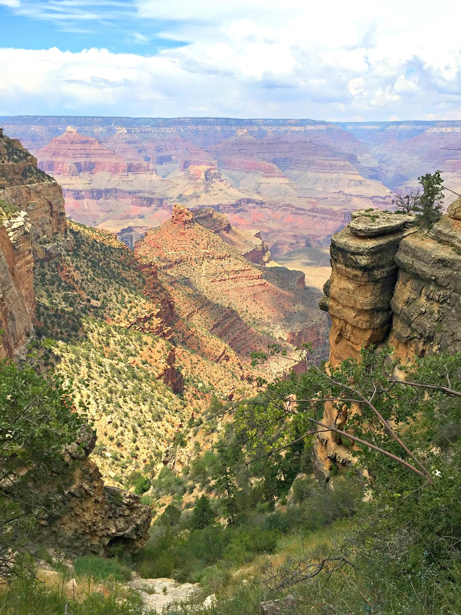 grand canyon with kids ~ what you need to know before you go