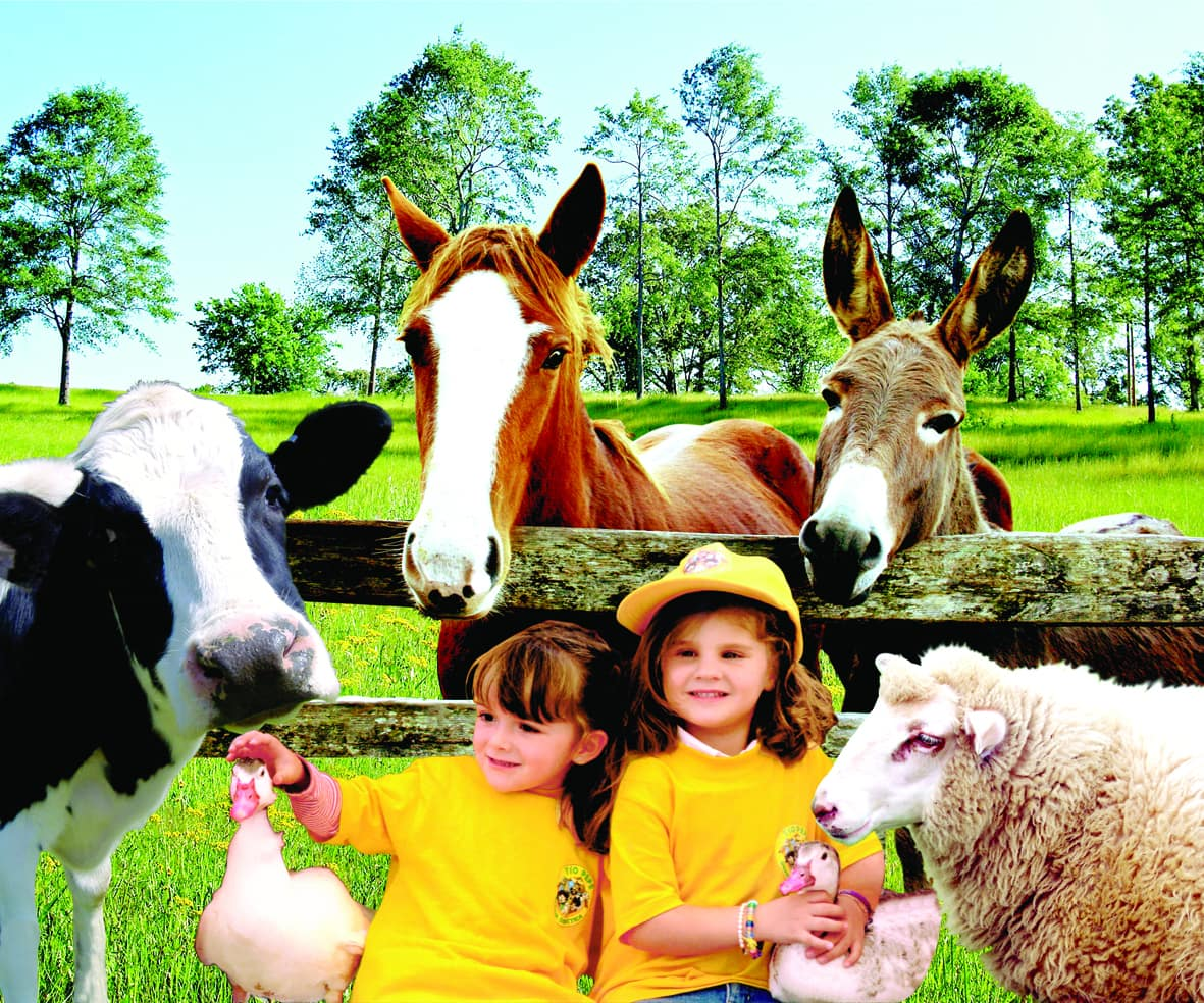 Children learn all about animals and farm life at Farm Tio Pepe ~ Mexico City with Kids