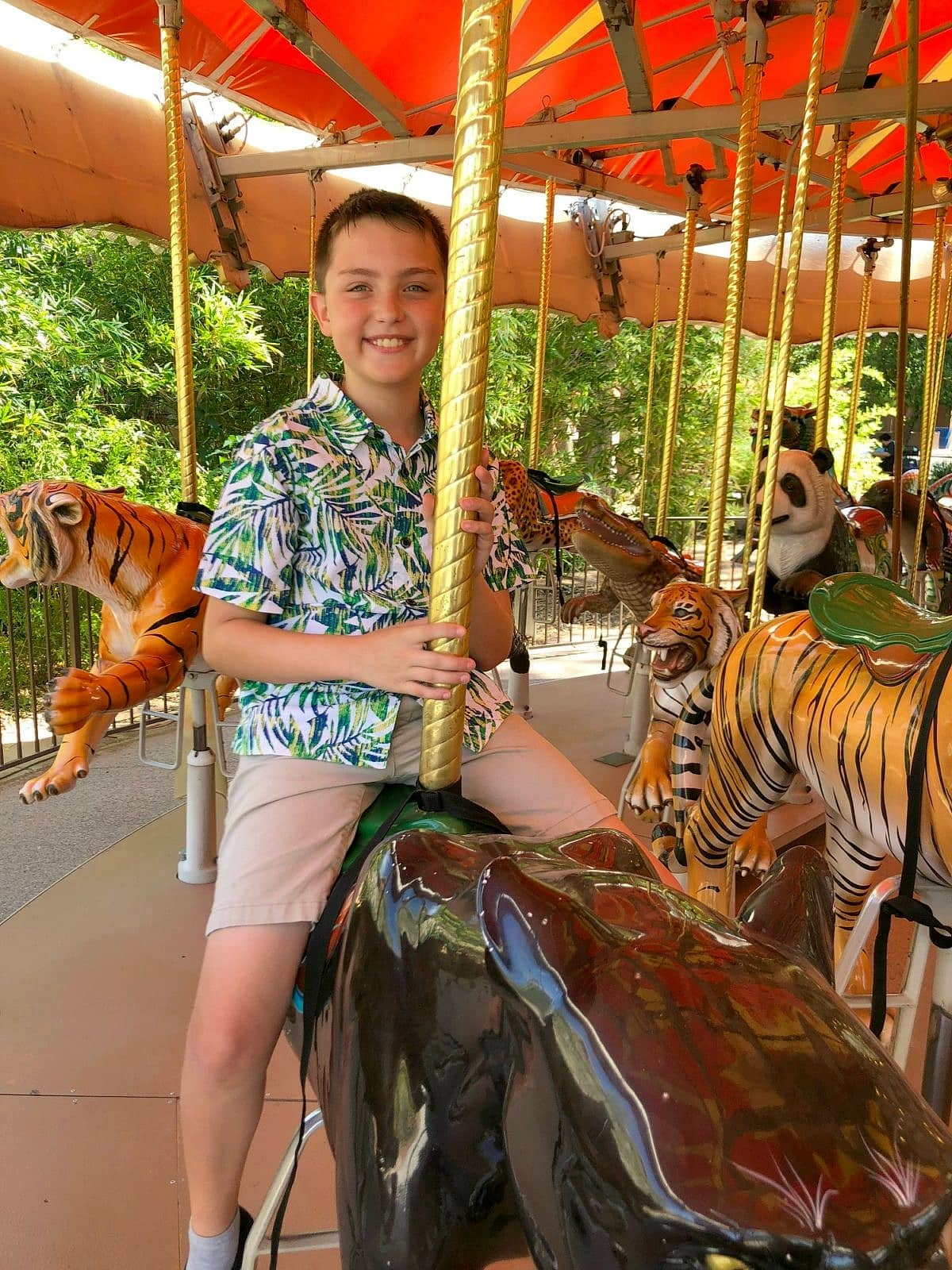 Carousel at the Phoenix Zoo with kids