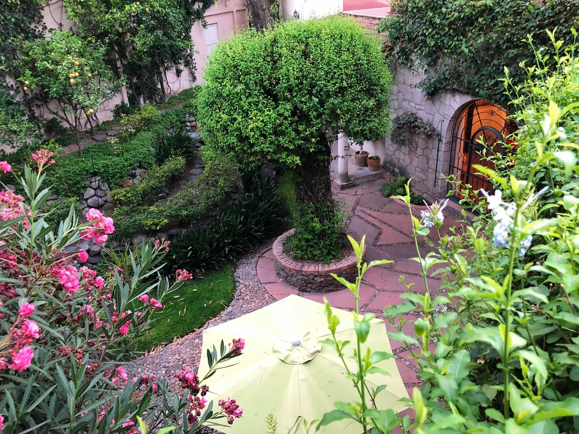 I was in love with the backyard at our San Miguel de Allende rental home