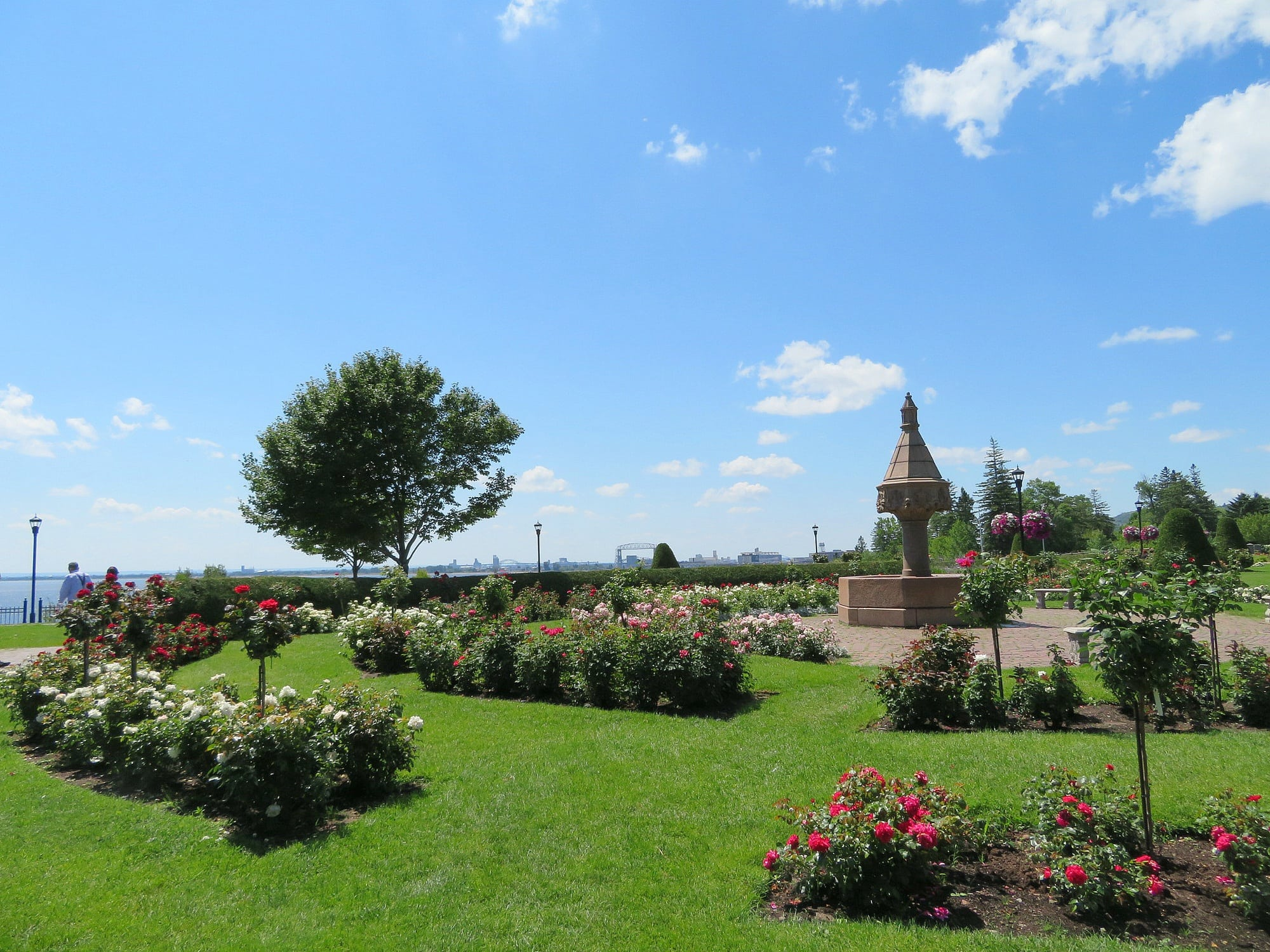 Duluth's Rose Garden boasts over 3,000 rose bushes