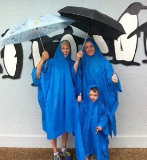 Embrace the rain at SeaWorld Orlando!
