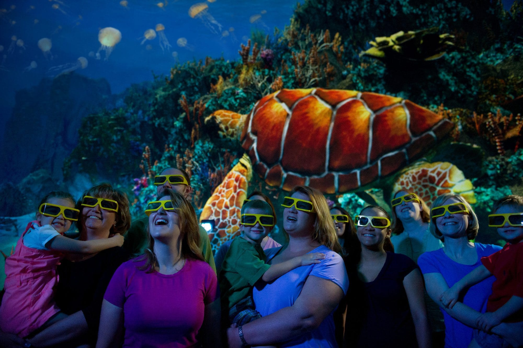 Escape the rain at SeaWorld Orlando by watching the Turtle Trek 3-D movie