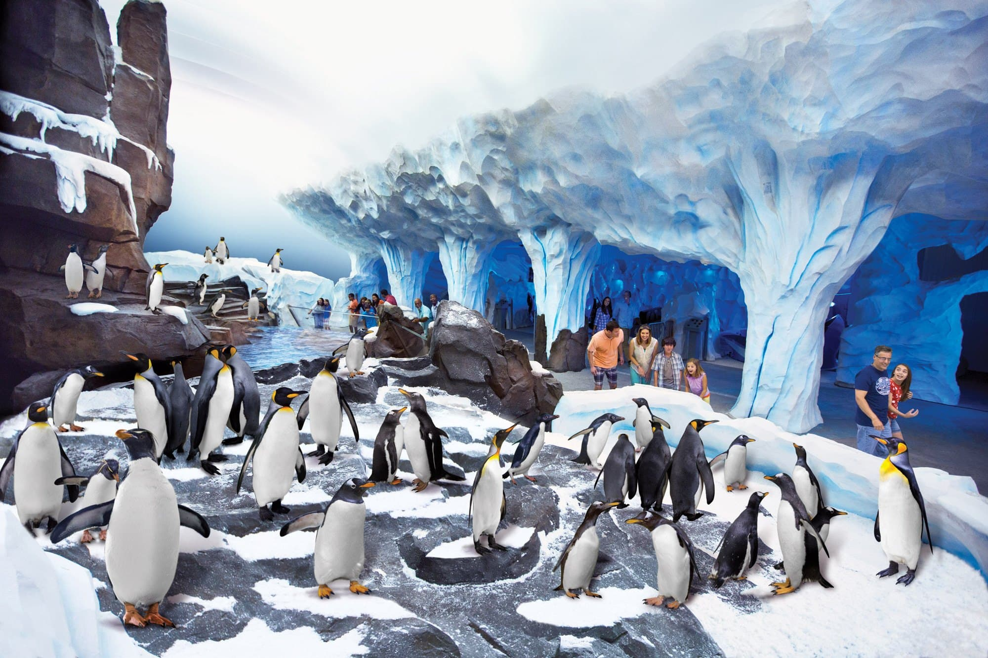 Indoor exhibits, like Antarctica: Empire of the Penguin, provide a reprieve at SeaWorld Orlando in the rain