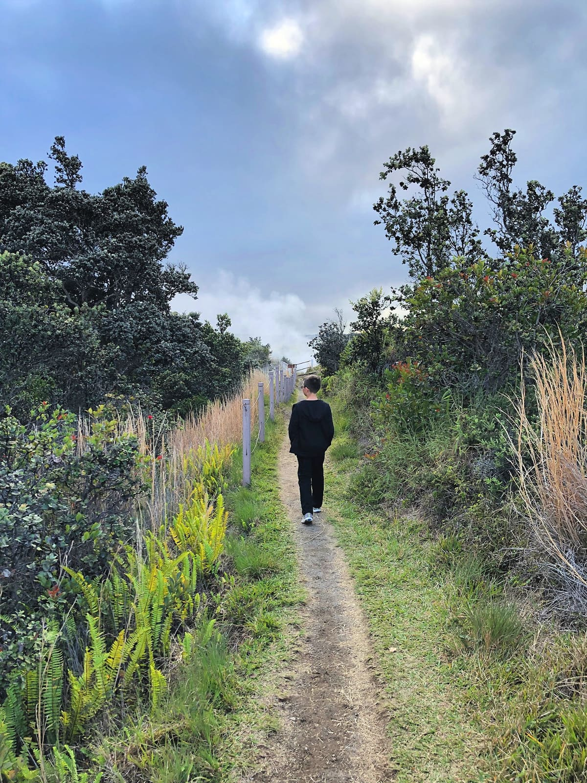 Exploring Hawaii Volcanoes National Park with kids