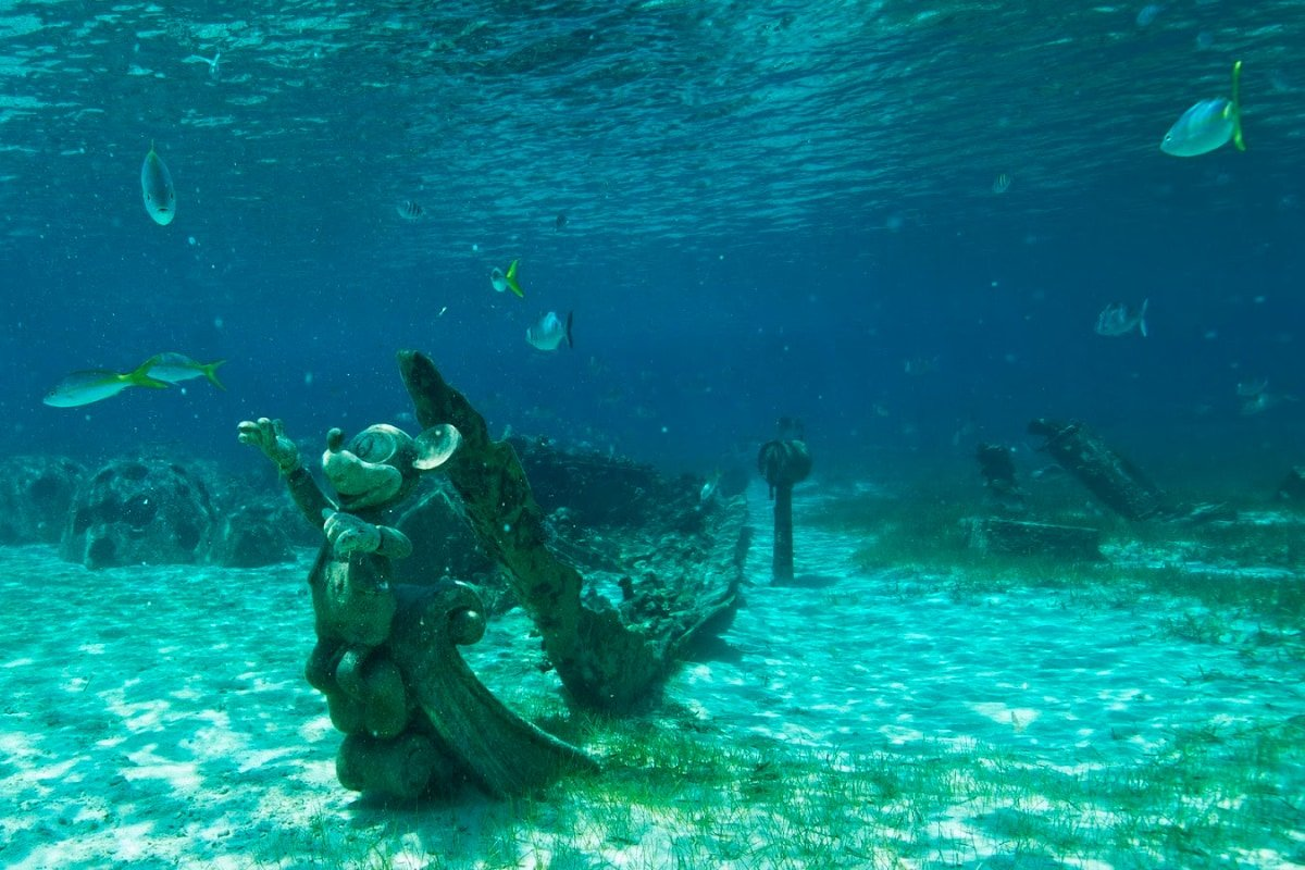 Rent or bring snorkeling gear to explore underwater wonders at Castaway Cay