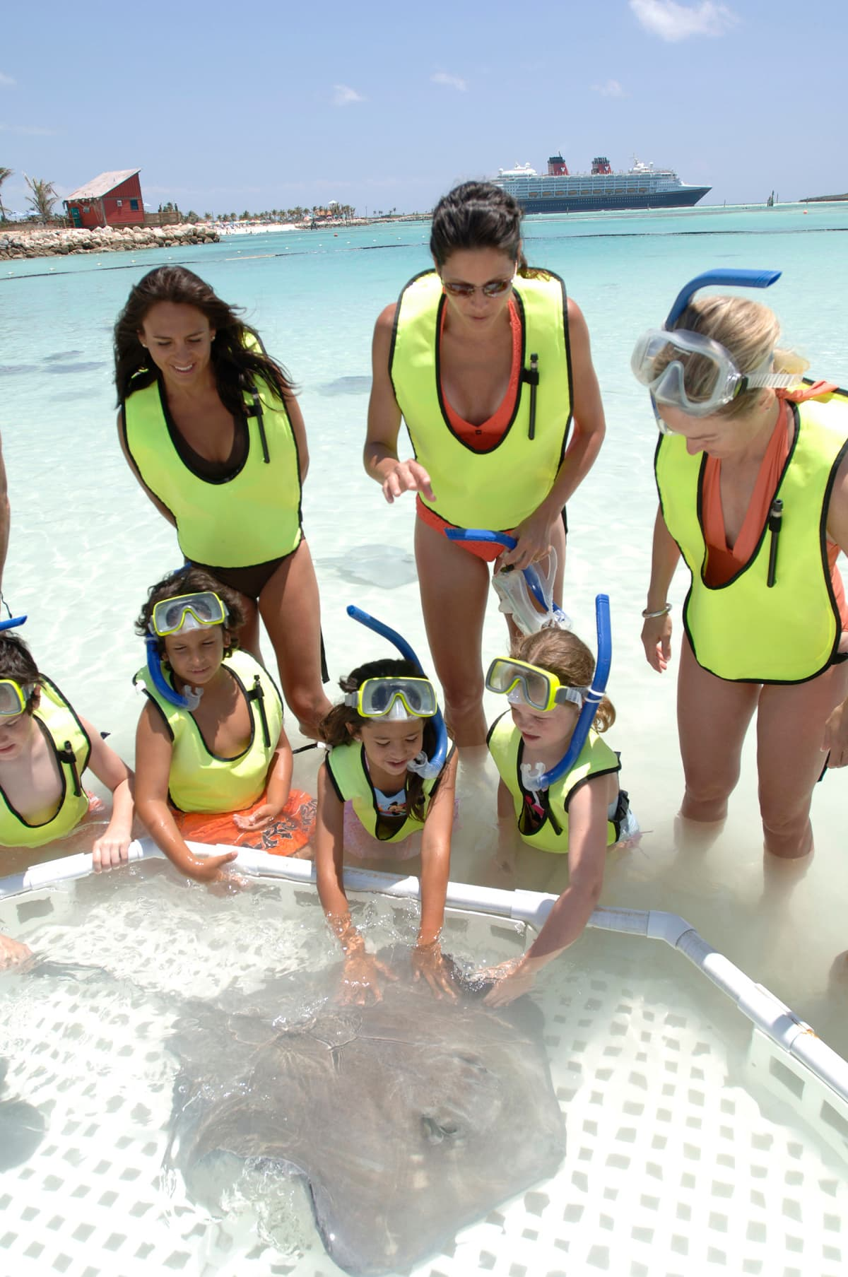 Castaway Ray's Stingray Adventure is a one-hour shore excursion for guests 5 years or older