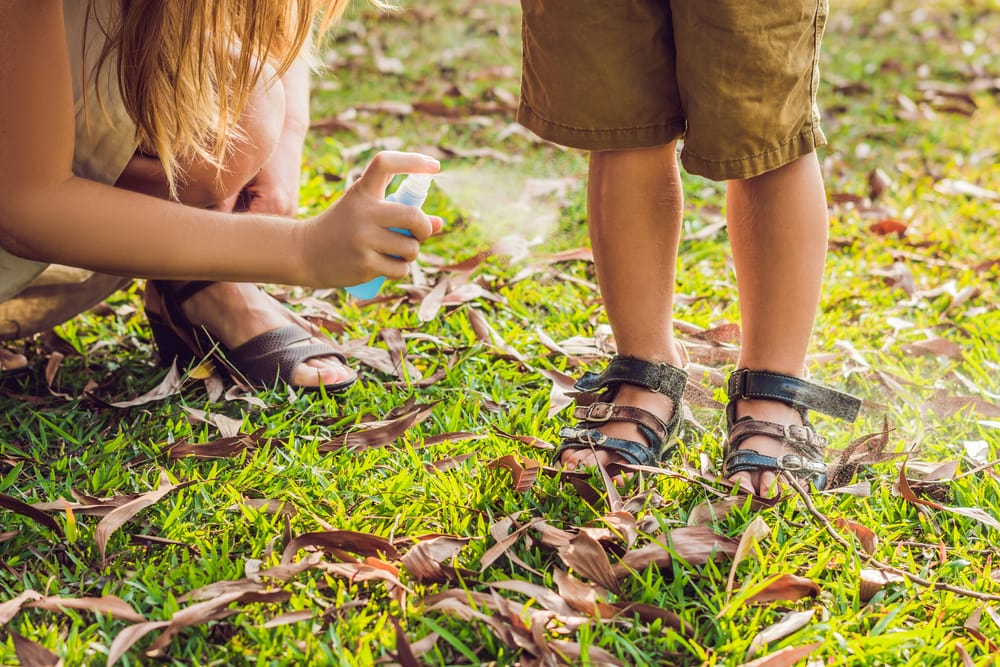 Use insect repellent spray to avoid bug bites when traveling with children