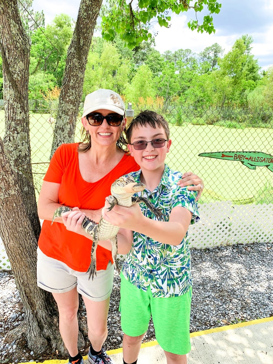 Baby alligator at Gulf Coast Gator Ranch & Airboat Tours