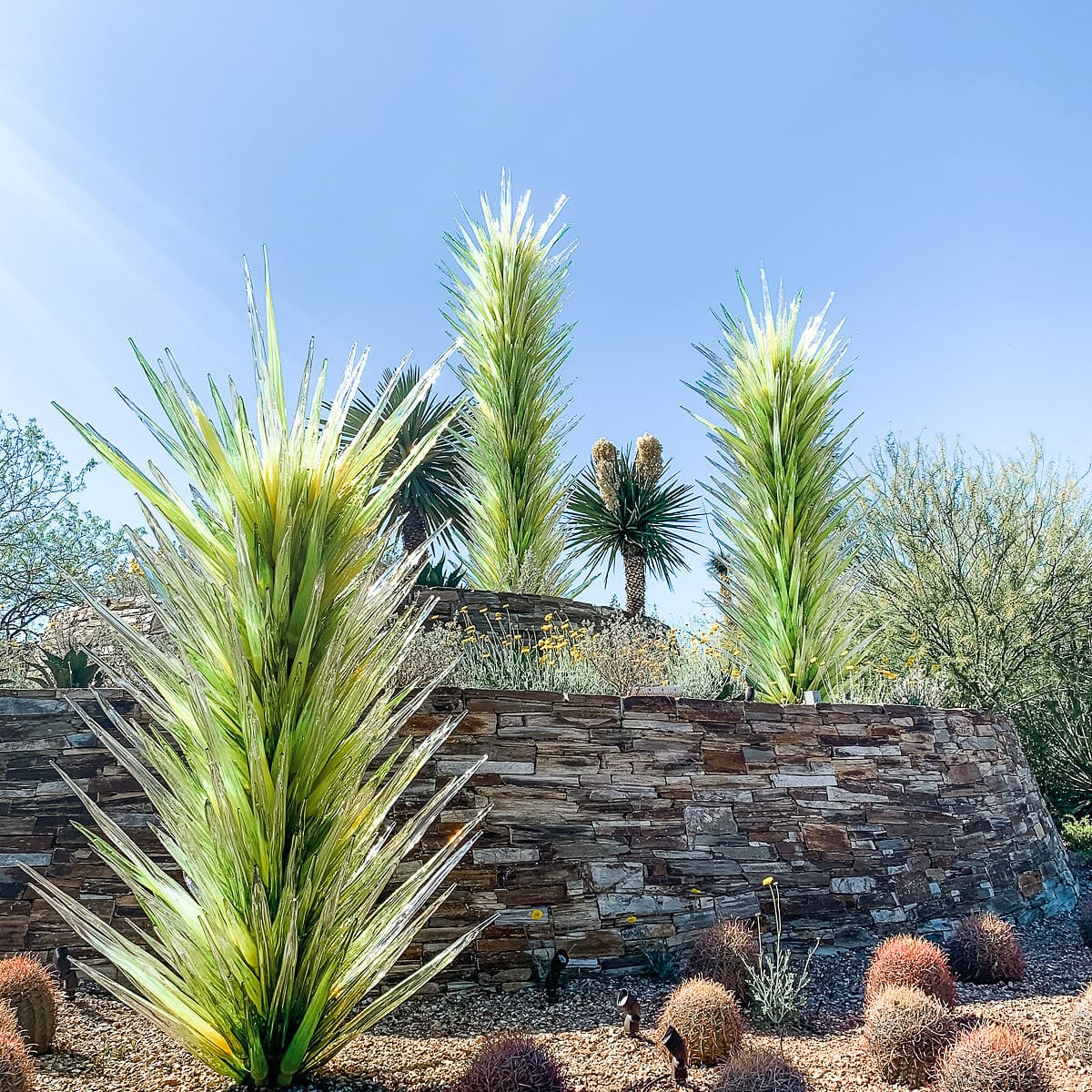 Chihuly glass sculptures at the Desert Botanical Garden