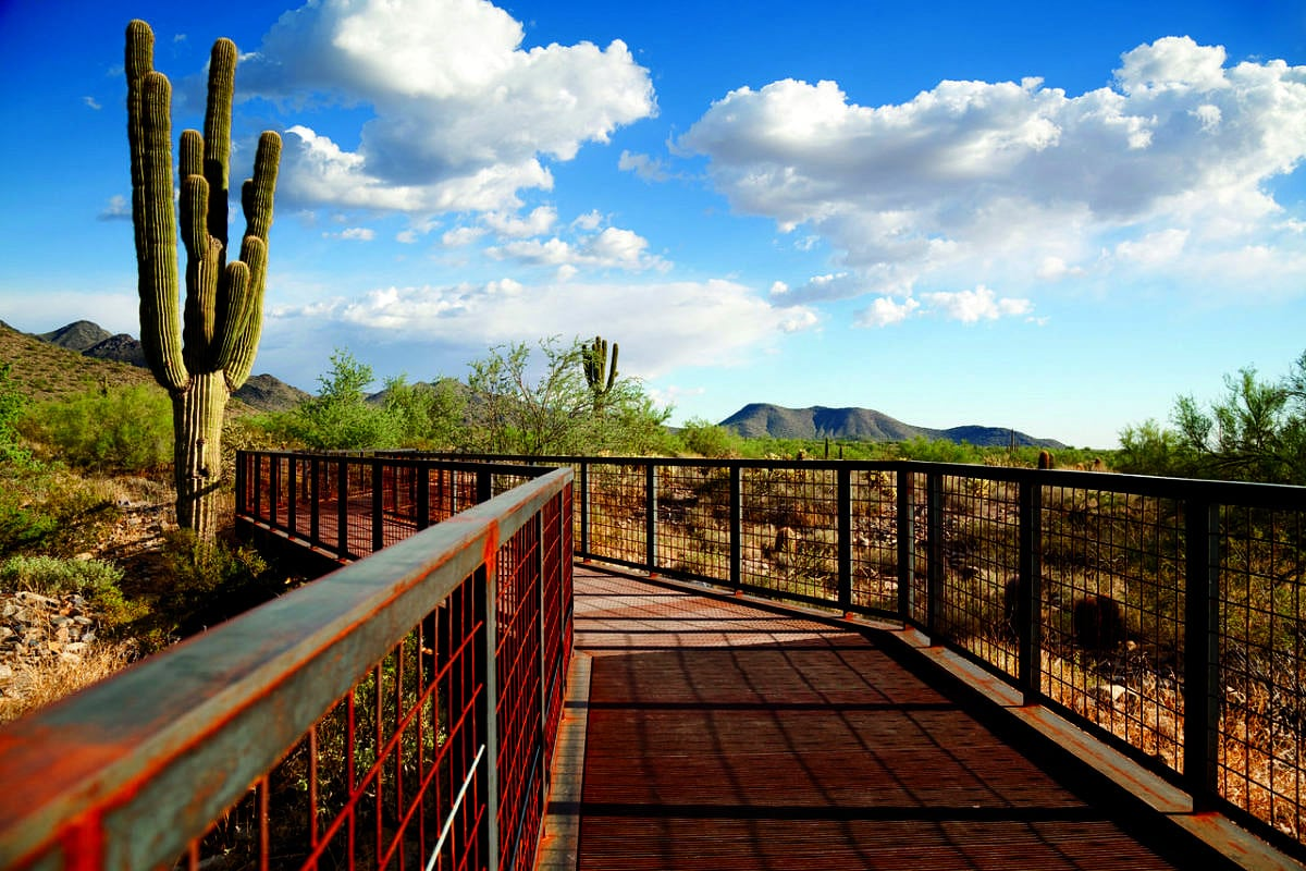 Gateway Trailhead to the McDowell Mountain Preserve in Scottsdale
