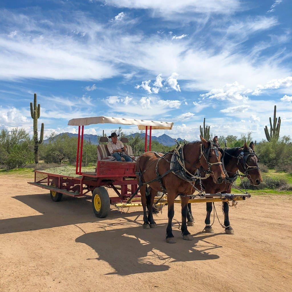 MacDonald's Ranch in Scottsdale, Arizona