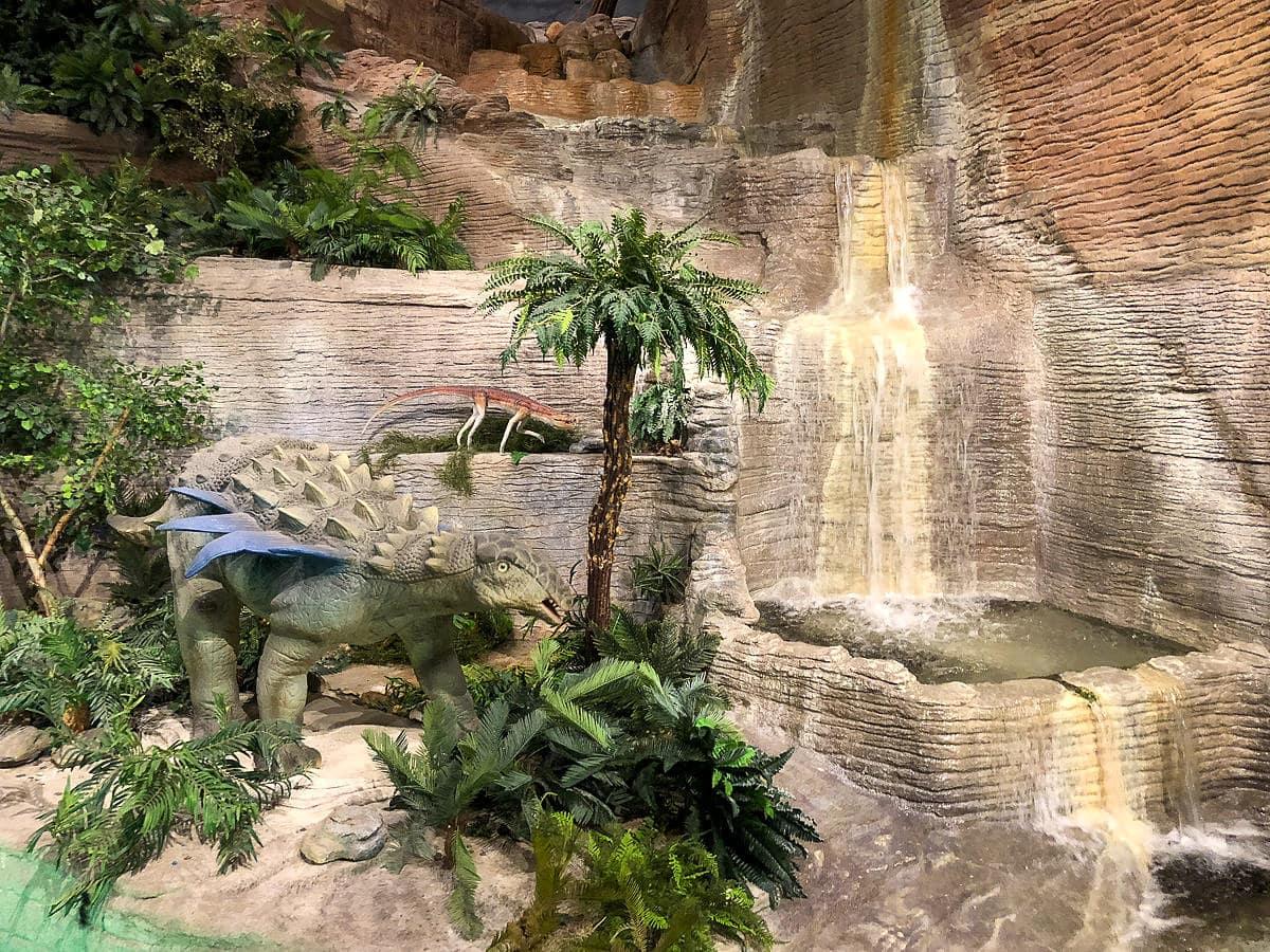 Dinosaur Mountain at Arizona Museum of Natural History