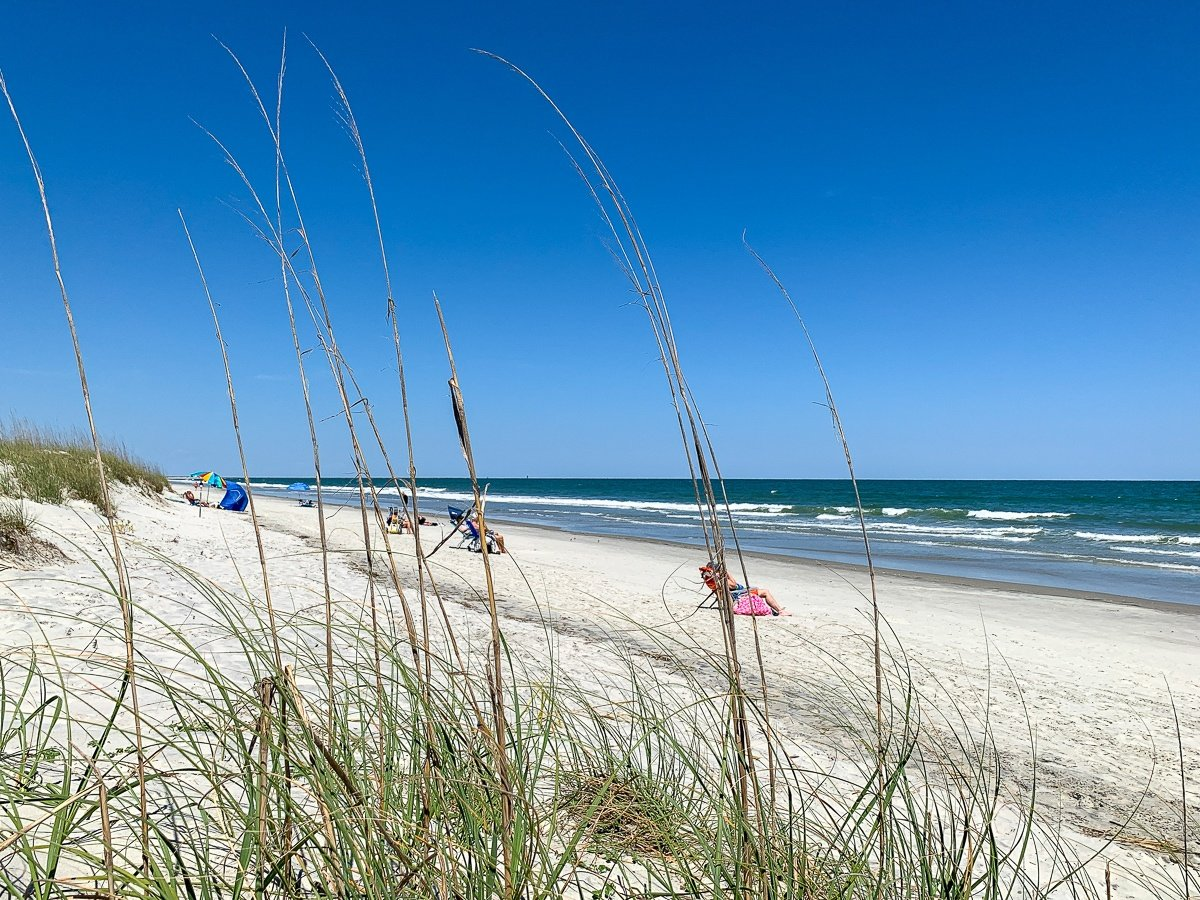 Huntington Beach State Park in Myrtle Beach, South Carolina