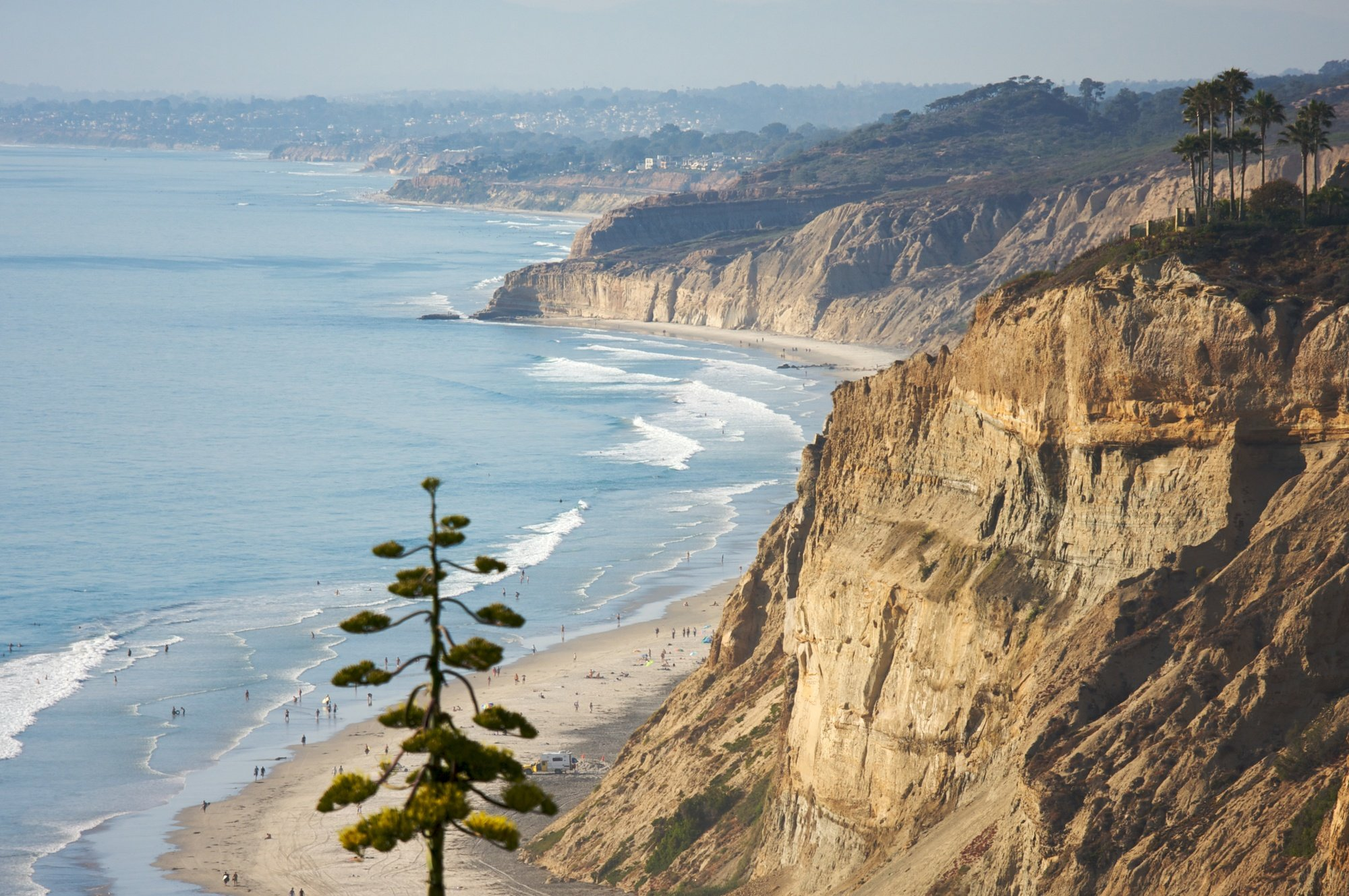 Torrey Pines State Natural Reserve in San Diego County