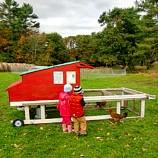 Wolfe's Neck farm with kids