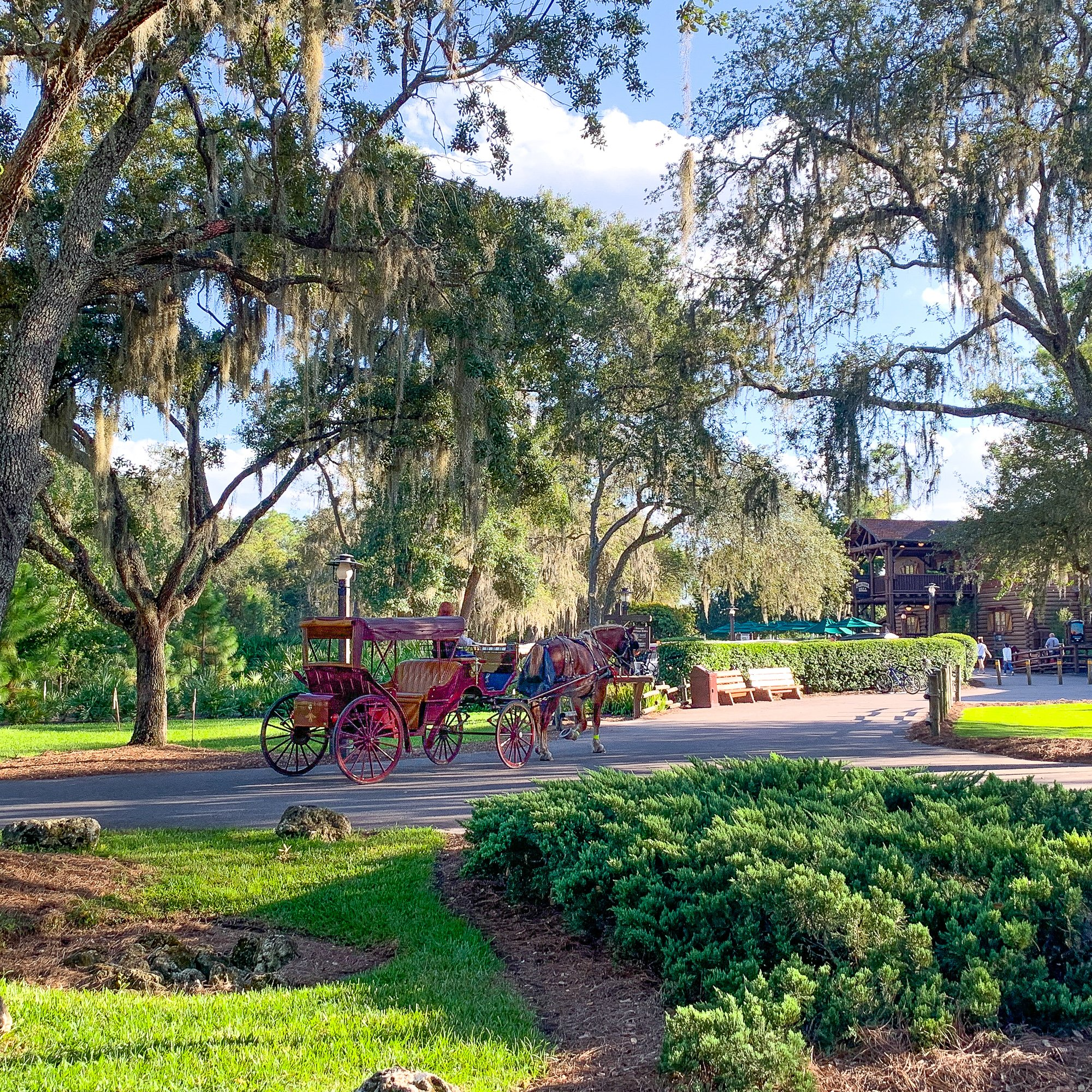 Carriage ride at Disney's Fort Wilderness Lodge
