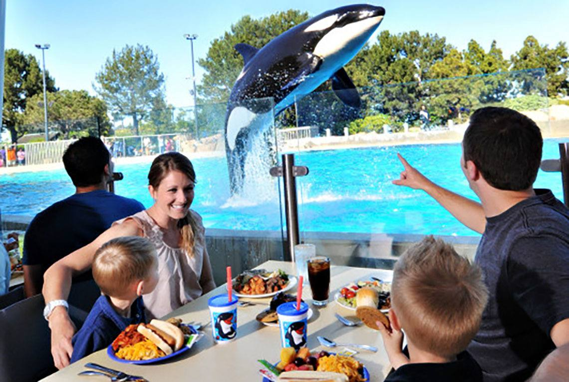 Family dining with orcas at SeaWorld Orlando