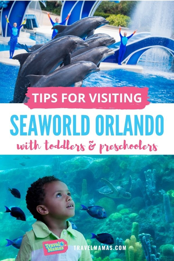Tips for Visiting SeaWorld Orlando with Toddlers, Preschoolers and Babies