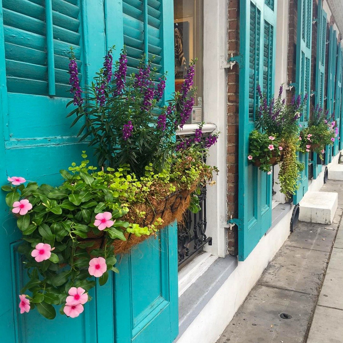 Romantic flower boxes in the French Quarter