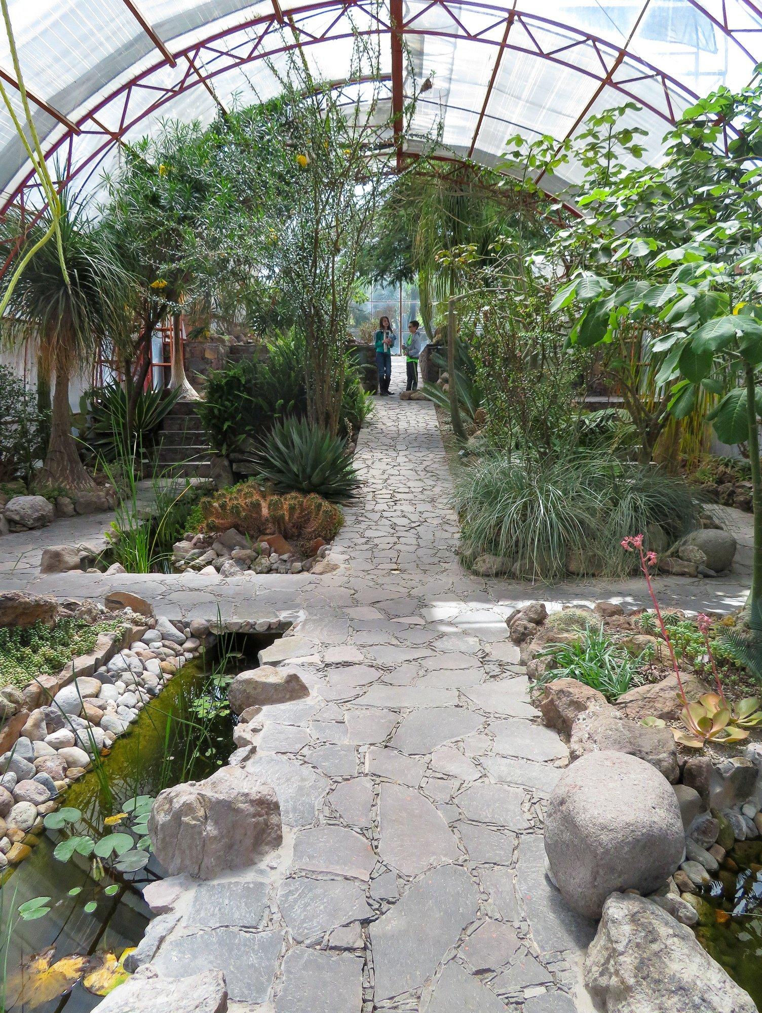 A greenhouse at El Charco del Ingenio