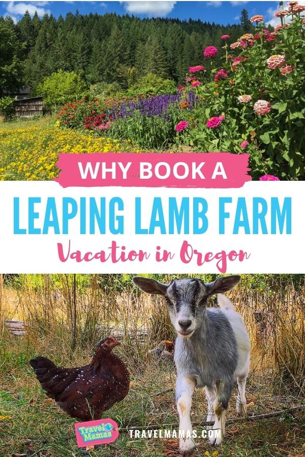 Leaping Lamb Farm Review