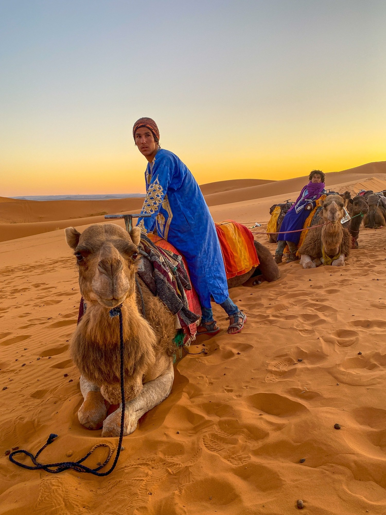 Camel safari guide in the Sahara Desert