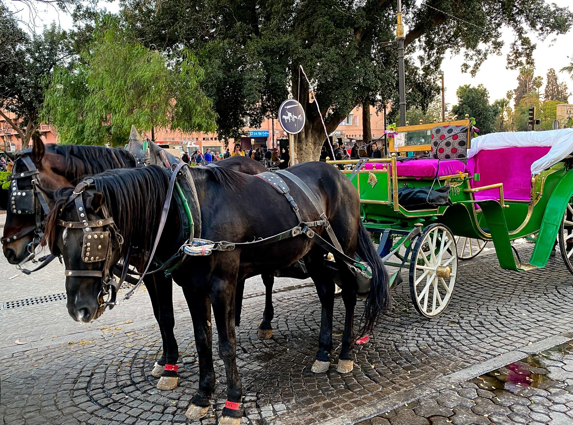 Horse drawn carriage in the Marrakech medina