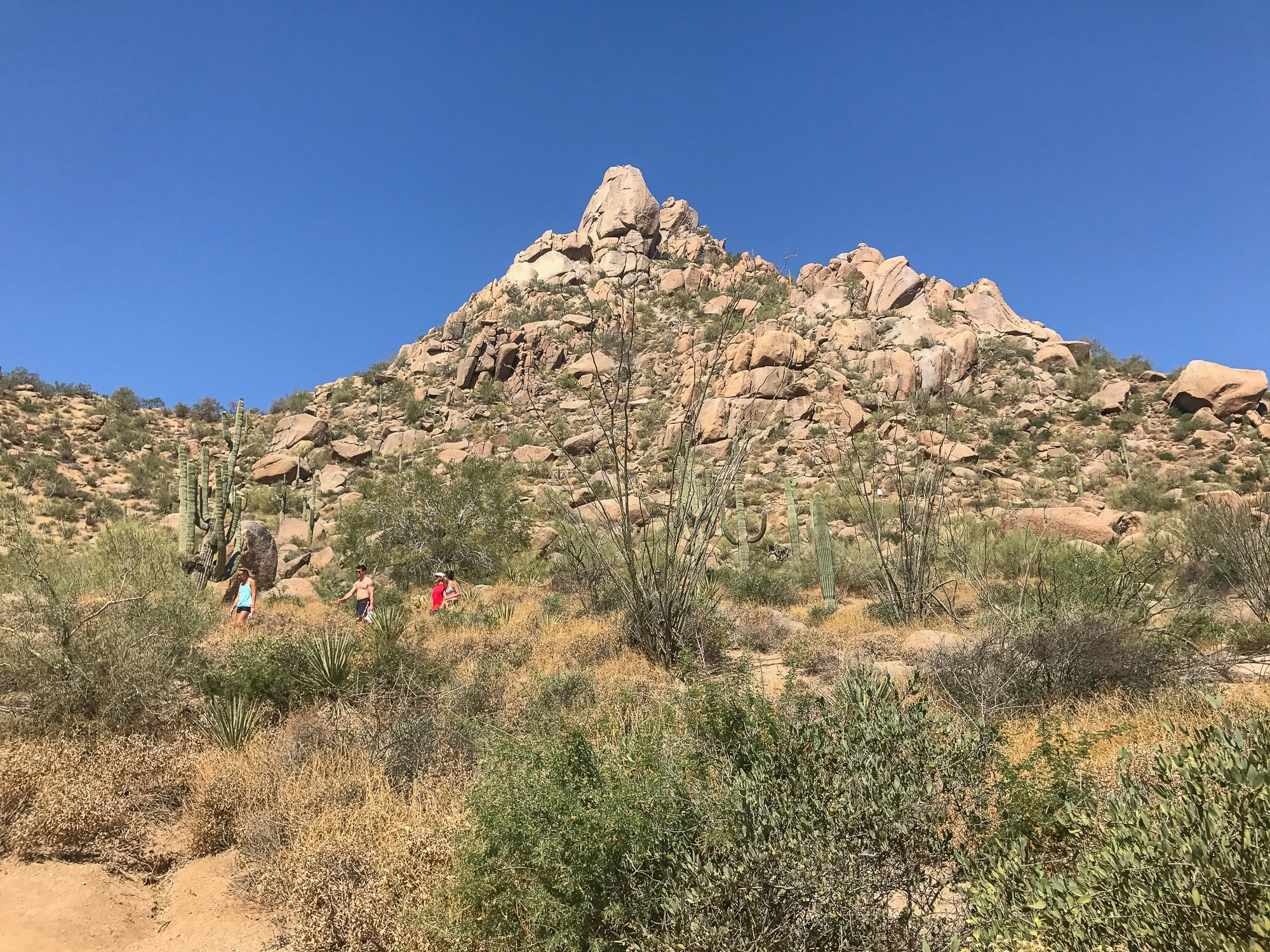 View of Pinnacle Peak Mountain during a hike from Four Seasons Scottsdale