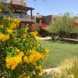 Four Seasons Scottsdale Review for Families with Kids