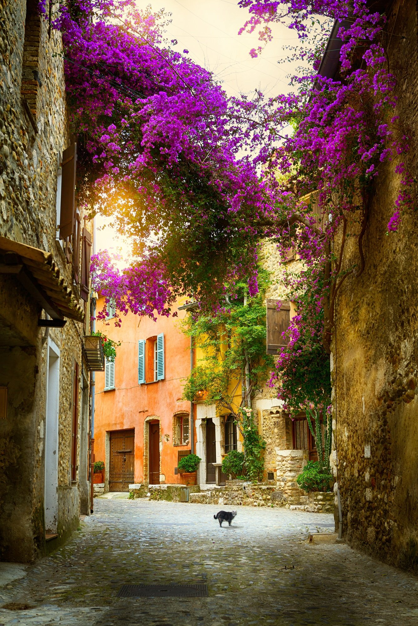 A beautiful street scene in Provence, France